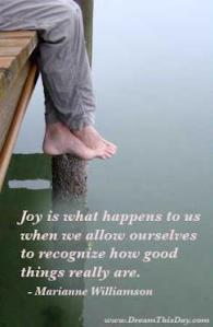 30-Joys we experience