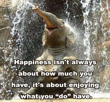 happiness is an imaginary condition Hyperreality is seen as a condition in which what is real and what  fulfillment or happiness is found through  the disneyland imaginary is.