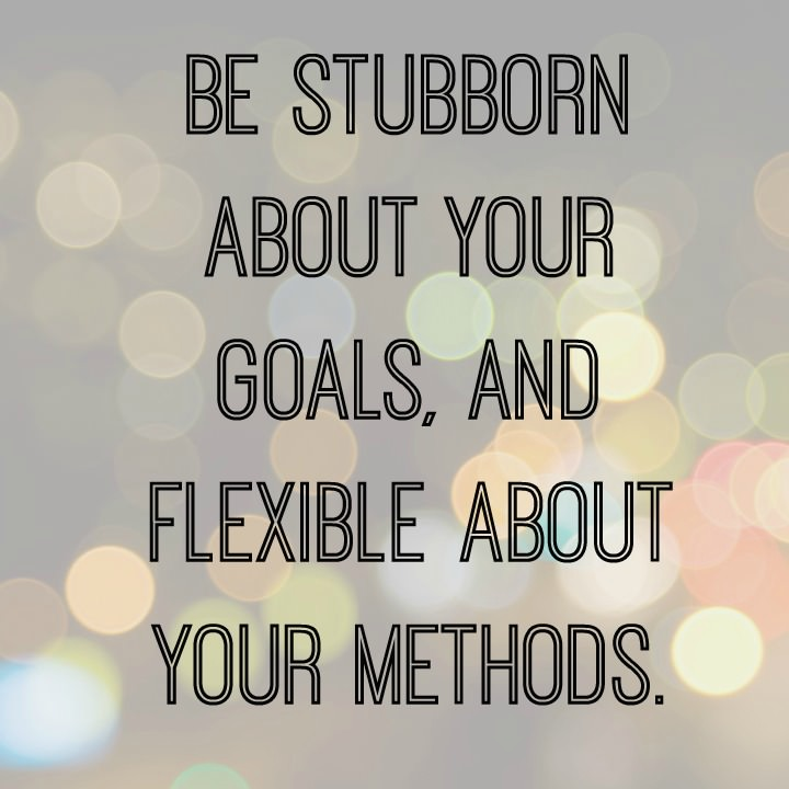 sucess is all about adopting stubborn goals and flexible methods