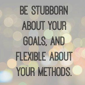 17-5 July 15 -Stubborn Goals and Flexible methods